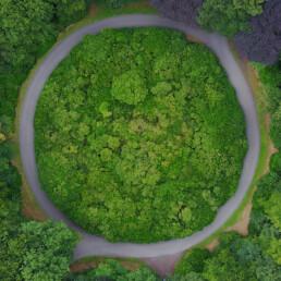 Anello di asfalto immerso nel verde della natura